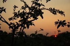 Herfst in zicht 2021, van 18 september tot 9 oktober € 180.00   WIFI BESCHIKBAAR OVER DE HELE CAMPING.